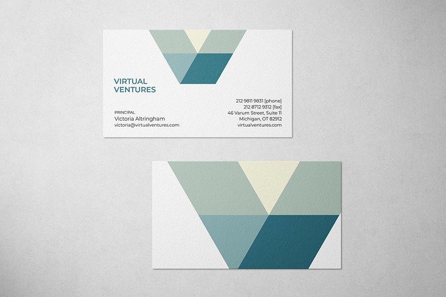 Virtual Ventures Business Card